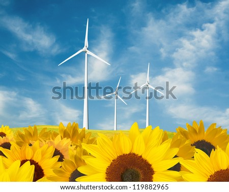 Wind turbines and the sunflower field
