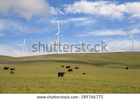 Wind Turbines at Wind Farm by Cattle Ranch Green Pasture in Washington State - stock photo
