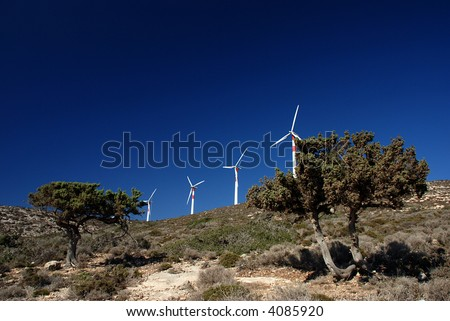 Wind turbines between two pines against the blue sky