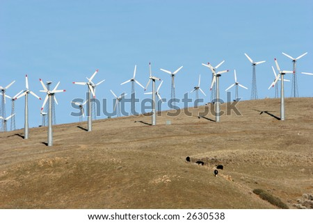 Wind turbines for clean air