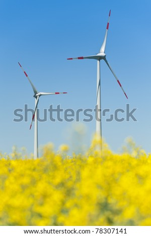 Wind turbines in a rapeseed field - stock photo