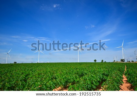 Wind Turbines in Green Fields with Blue Sky