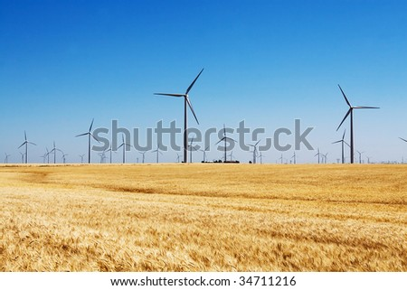 Wind turbines in wheat field