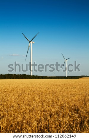 wind turbines (mills) farm near a wheat field on blue sky background