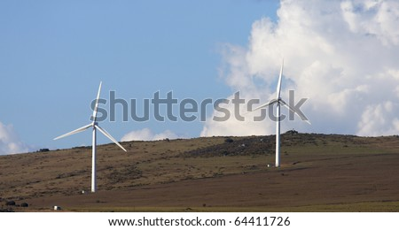 Wind turbines near the town of Darling in South Africa - stock photo