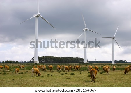 Wind Turbines on a modern windmill farm for alternative energy production. Electricity is powered ecological and considered better for the environment over oil and other fossil fuels.