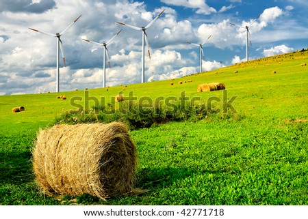 Wind turbines on summer field - stock photo