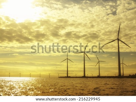 wind turbines power generator farm for renewable energy production along coast baltic sea near Denmark at sunset /sunrise. Alternative green energy. ecology. - stock photo