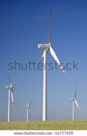 Wind turbines surrounded by cereal field