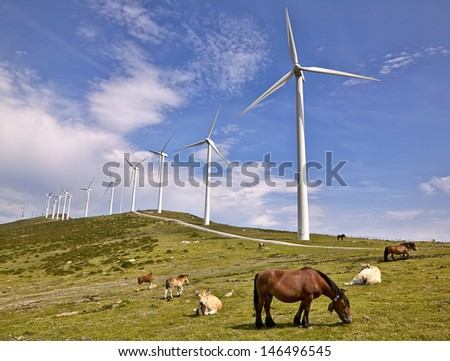 wind turbines with cows and horses