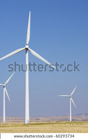 windfarm fied with blue and clear sky