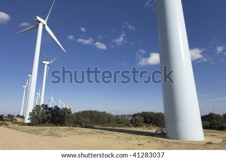 windfarm fied with blue sky