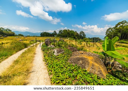 Winding country road leading through the multi colored rice fields of Batutumonga into the stunning landscape on the mountains of northern Tana Toraja, South Sulawesi, Indonesia. - stock photo