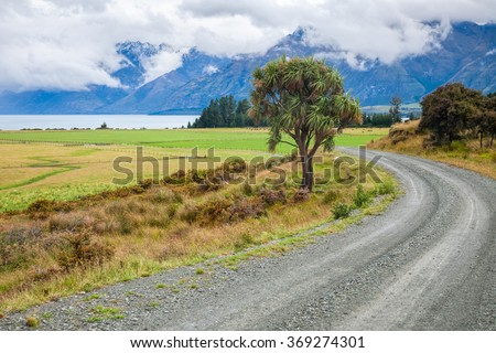Winding gravel road through pasture in New Zealand with cabbage tree and cloudy mountains in background - stock photo