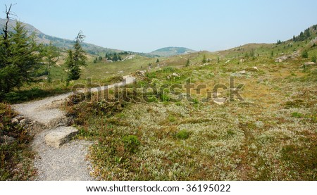 Winding hiking trail at sunshine meadows, one of the best trails at banff national park, alberta, canada - stock photo