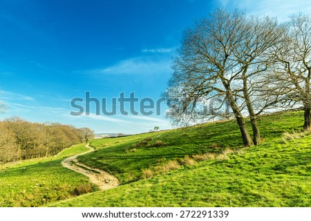 Winding Path at Digley Wood near Holmfirth, Yorkshire, Peak District, England, UK - stock photo