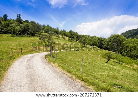 Winding path through green summer landscape, Black Forest, Germany - stock photo