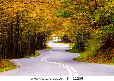 Winding road during the autumn season. - stock photo