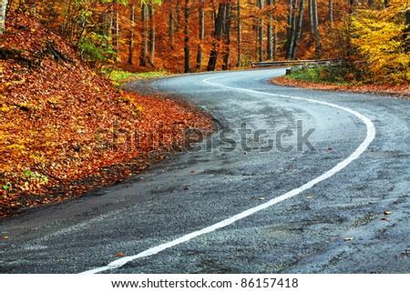 Winding road in autumn - stock photo