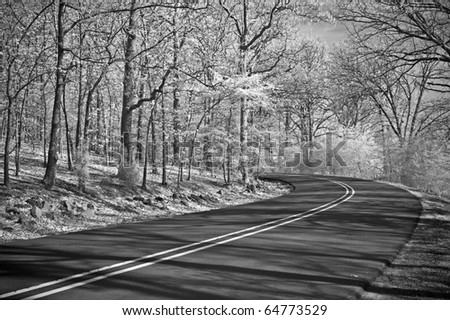 Winding Road in infrared.