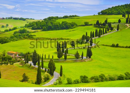 Winding road in the fields of Tuscany. Italy