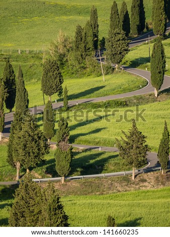 Winding road lined with cypresses near Monticchiello in Tuscany - stock photo