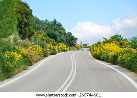 Winding tarmac road with blooming flowers - stock photo