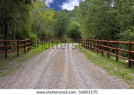 Winding, Tree Lined Country Road - stock photo