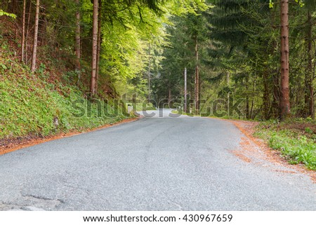 Winding woodland mountain road at spring in Slovenia,Europe - stock photo