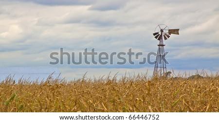 windmill corn field - stock photo