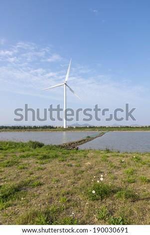 Windmill grass river - stock photo
