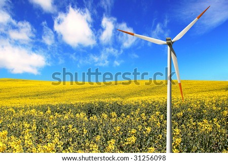 Windmill Landscape with fields of flowering Rapeseed