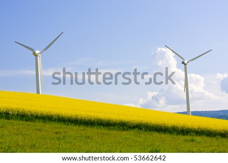 Windmill over rapeweed field in bloom