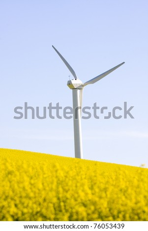 Windmill over rapeweed field in bloom - stock photo