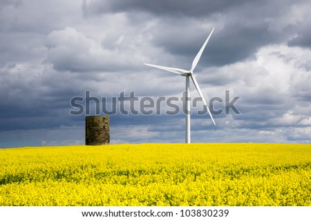 Windmill with rapeseed / Duel green energy from wind power and biofuel - stock photo