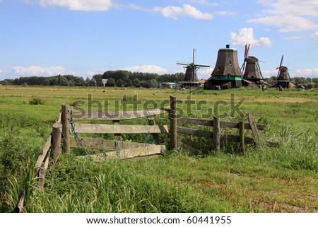 Windmills at Zaanse Schans in Holland - stock photo