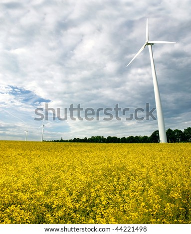 Windmills with rapeseed field