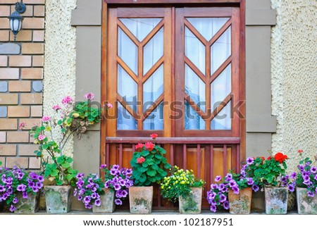 Window and colorful flowers