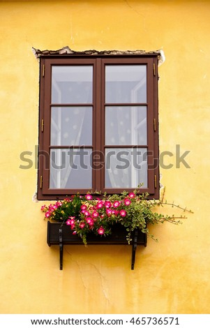 window and flower box and flower box