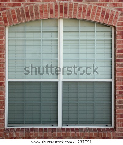 Window and window blinds
