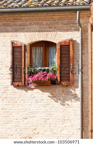 Window box flower arrangement, Italy - stock photo