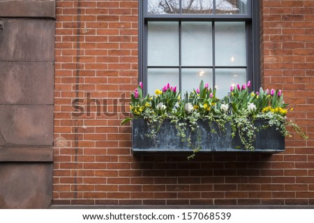 Window box with spring flowers, on an old apartment building - stock photo
