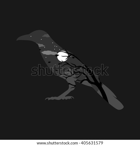 window into the night in the form of raven on dark