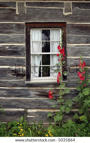 Window of a wooden country house with red malva flowers growing near it.