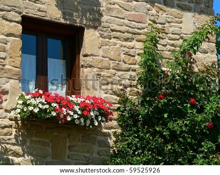 window of an old house in the city of pamplona with rose-bush and window box