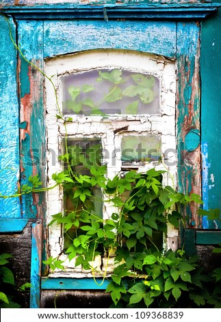 window of an old house overgrown plants - stock photo