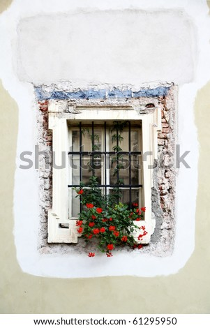 Window of old house with flowers on the sill. Prague