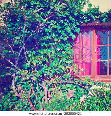 Window on the Facade of a Stone House Decorated with Plant in France, Instagram Effect - stock photo