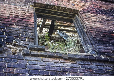 Window opening covered by vegetation in brick wall of shabby building. This building is very old and not inhabited for a long time. Some color effects give uniqueness to the picture. - stock photo