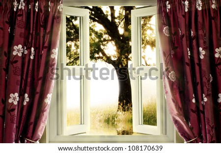 Window view onto tree in motion - stock photo